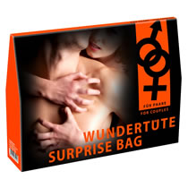 Surprise Pack with Sex Toys and Lingerie for Couples