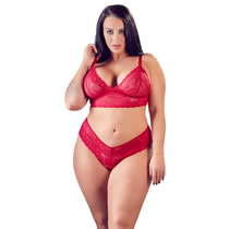 Plus Size Lace Bra and Briefs in Red